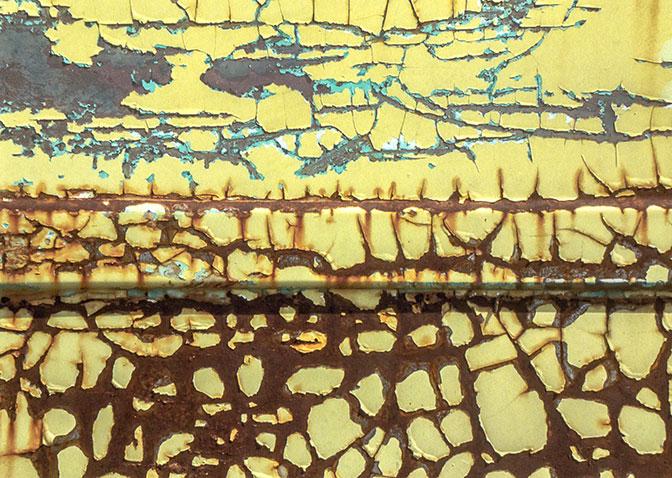 "Allen Bourne, ""Safari"", archival digital print"