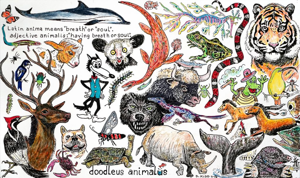 "David Kidd, ""Doodleus Animalus"", 2018"