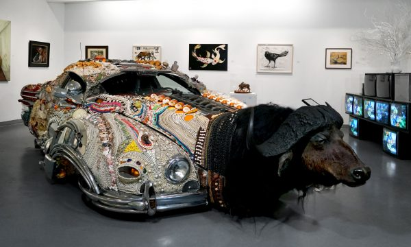 """""""Animals"""", Installation view at the Art Car Museum, 2019"""
